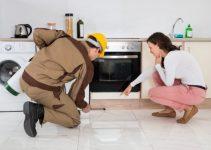 Como Acabar com as Baratas em Apartamento